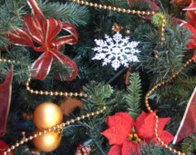 Decorating a tree for Christmas is a well established tradition. Come to Olds for the Festival of Trees each December.